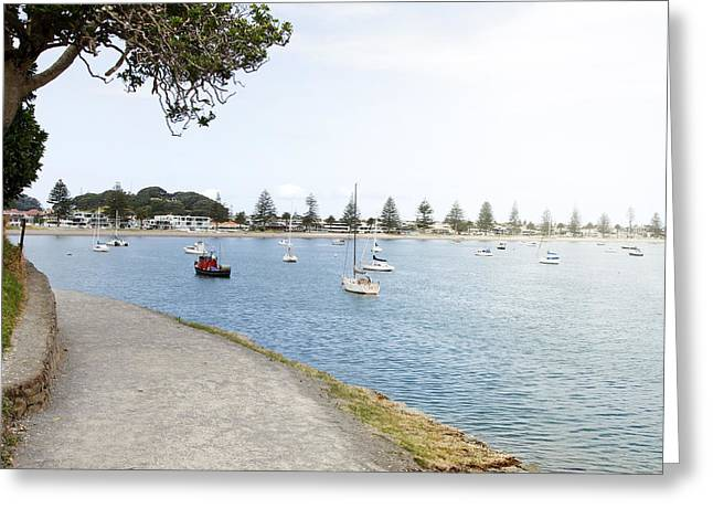 Mount Maunganui Greeting Cards - Boats Greeting Card by Les Cunliffe