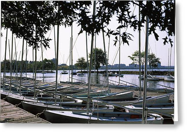 Boats In Water Greeting Cards - Boats Moored At A Dock, Charles River Greeting Card by Panoramic Images