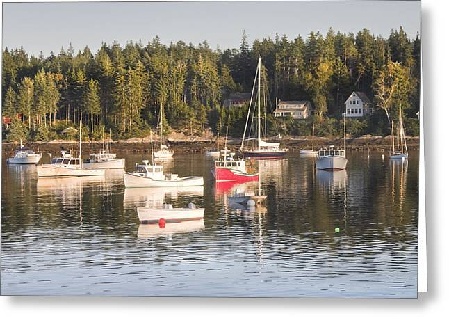 Scenic New England Greeting Cards - Boats Moored inTenants Harbor Maine Greeting Card by Keith Webber Jr