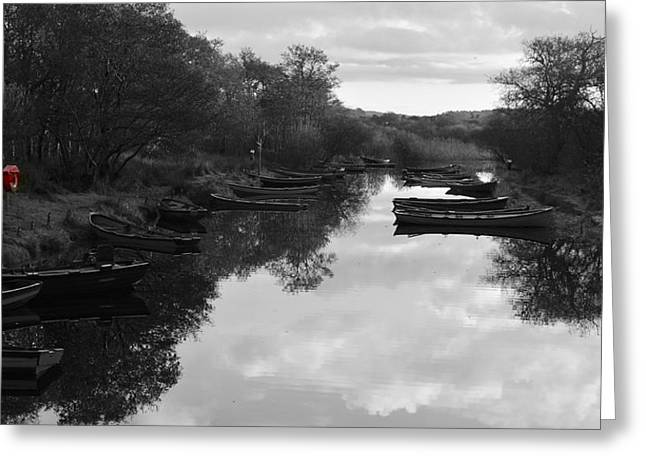 Walsh Lake Greeting Cards - Boats near Ross Castle Greeting Card by Barbara Walsh