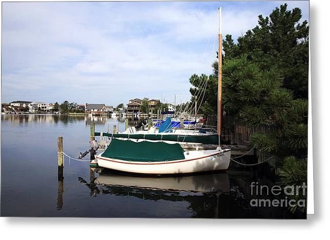 Boats of Long Beach Island color Greeting Card by John Rizzuto