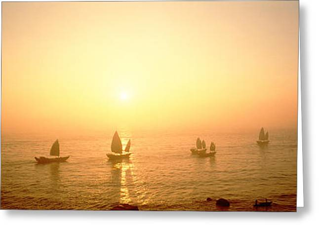 Fishing Boats Greeting Cards - Boats Shantou China Greeting Card by Panoramic Images