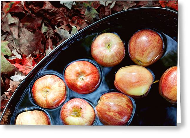 Apple Art Greeting Cards - Bobbing For Apples Greeting Card by Kim Fearheiley