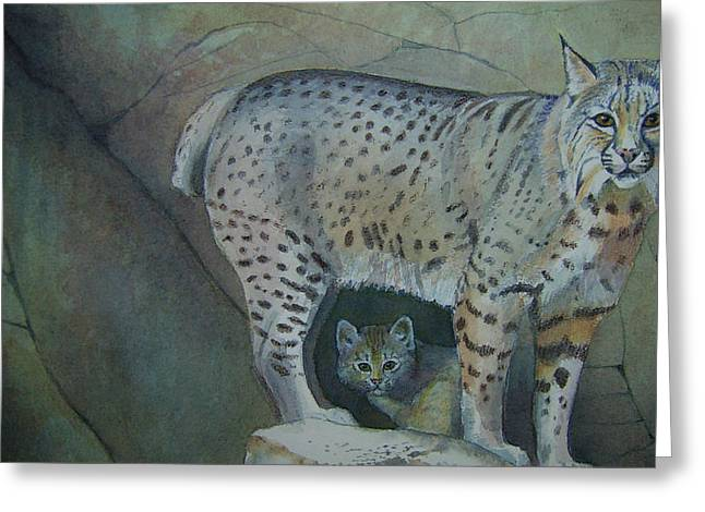 Bobcat And Baby Greeting Card by Carmen Durden