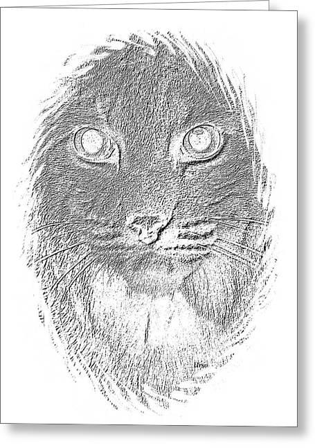 Bobcats Digital Art Greeting Cards - Bobcat in Charcoal Greeting Card by Maria Urso