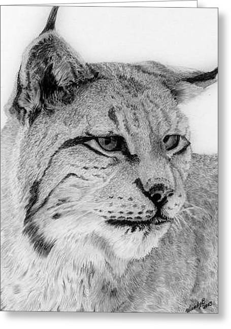 Bobcats Drawings Greeting Cards - Bobcat Greeting Card by Wendy Brunell