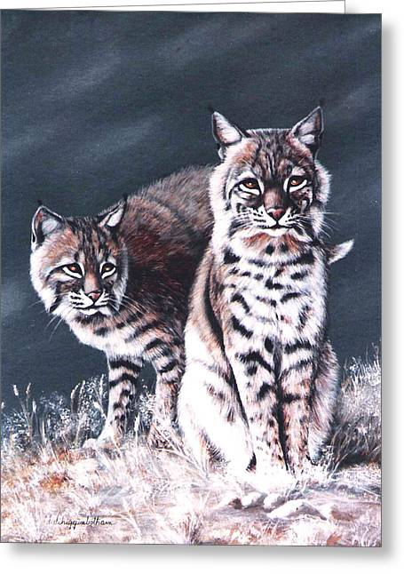 Bobcats Paintings Greeting Cards - Bobcats in the Hood Greeting Card by DiDi Higginbotham