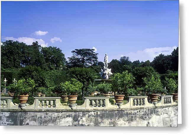 Boboli Greeting Cards - Boboli Gardens Greeting Card by Bob Phillips