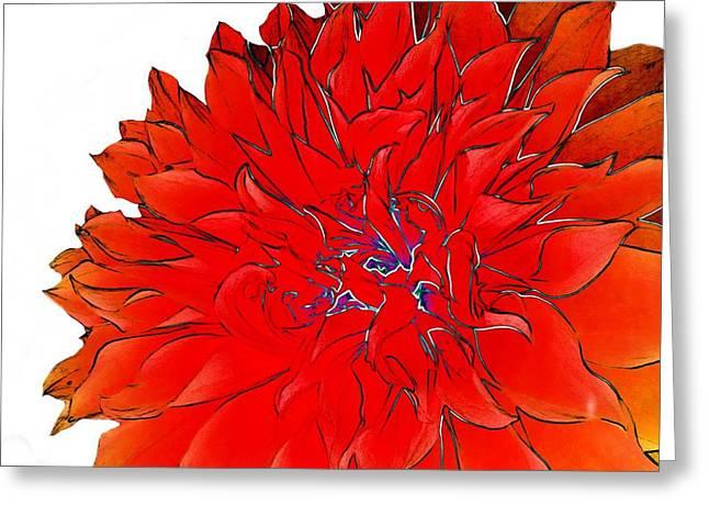 Bob's Flower 2 Greeting Card by Cindy Edwards