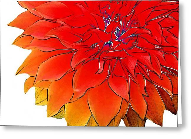 Bob's Flower Greeting Card by Cindy Edwards