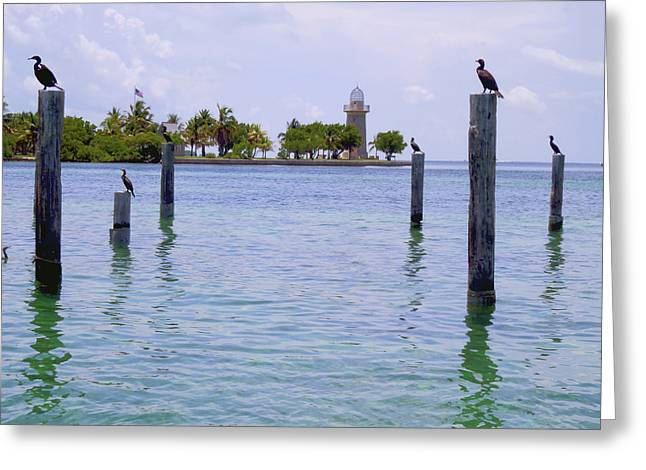 Captiva Greeting Cards - Boca Chita docks Greeting Card by Carey Chen