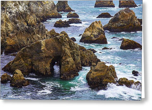 Sonoma Photographs Greeting Cards - Bodega Head Greeting Card by Garry Gay