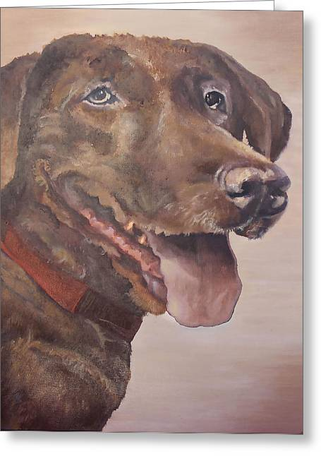 Chocolate Lab Greeting Cards - Bodhi Greeting Card by Fallon Franzen