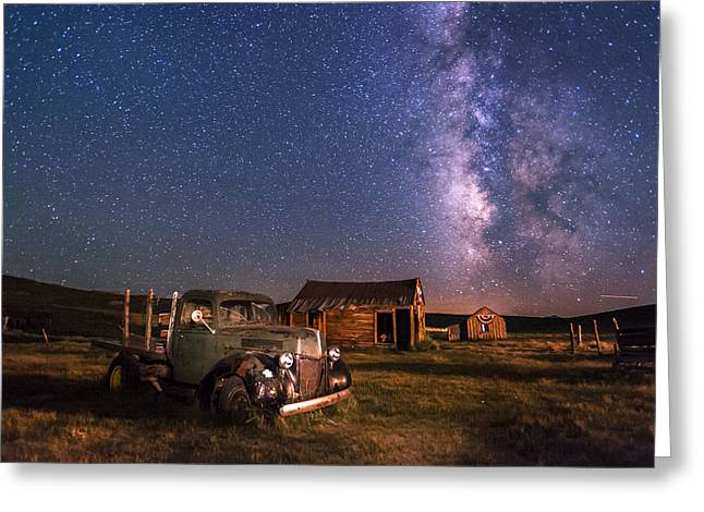 Bodie Nights Greeting Card by Cat Connor