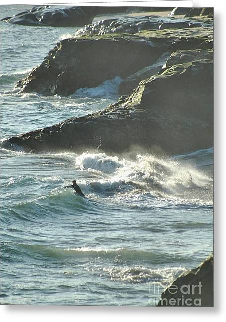 Santa Cruz Surfing Greeting Cards - Body Surfing Greeting Card by Shauna Fackler
