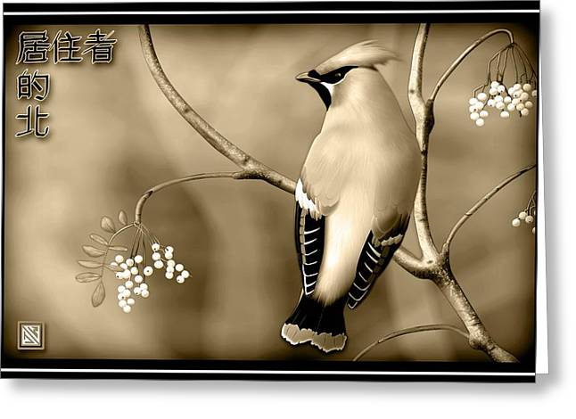 Bohemian Waxwing In Sepia Greeting Card by John Wills