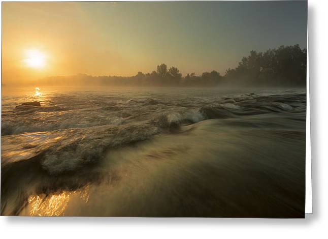 Golden River Greeting Card by Davorin Mance