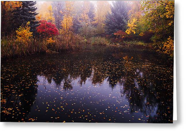 Pond In Park Greeting Cards - Boise Autumn Greeting Card by Vishwanath Bhat