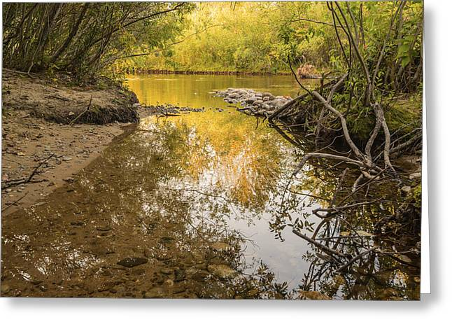 Reflections Of Trees In River Greeting Cards - Boise River Autumn Greeting Card by Vishwanath Bhat