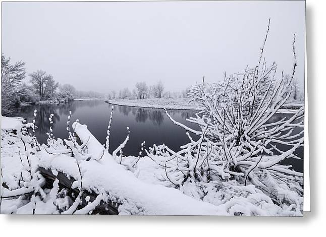Powder Snow Greeting Cards - Boise River in winter Greeting Card by Vishwanath Bhat