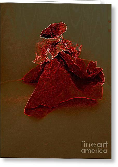 Full Skirt Greeting Cards - Bolero Greeting Card by Nancy Kane Chapman