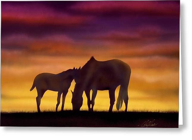 Acylic Greeting Cards - Bonding at Dusk - 2 Greeting Card by Chris Fraser