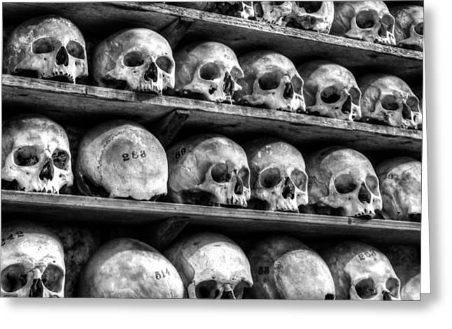 Morbid Greeting Cards - Bone Structure Greeting Card by Ian Hufton