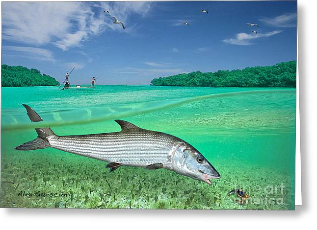 Fly Fishing Drawings Greeting Cards - Bonefish Flat Greeting Card by Alex Suescun