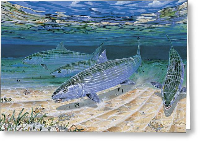 Pez Vela Paintings Greeting Cards - Bonefish Flats In002 Greeting Card by Carey Chen