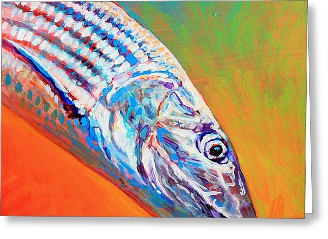 Bonefish Portrait Greeting Card by Mike Savlen