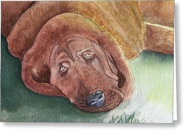 Blood Hound Greeting Cards - Boneless Beau Greeting Card by Caryl J Bohn