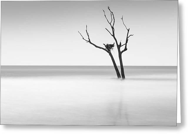 Boneyard Beach - II Greeting Card by Ivo Kerssemakers