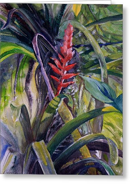Bromeliad Paintings Greeting Cards - Bonitas Bromelia Greeting Card by Kitty Harvill