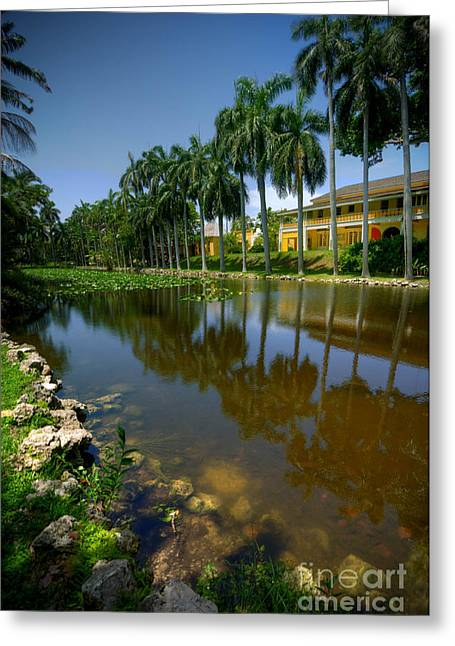 Fort Lauderdale Greeting Cards - Bonnet House Fort Lauderdale FL Greeting Card by Amy Cicconi