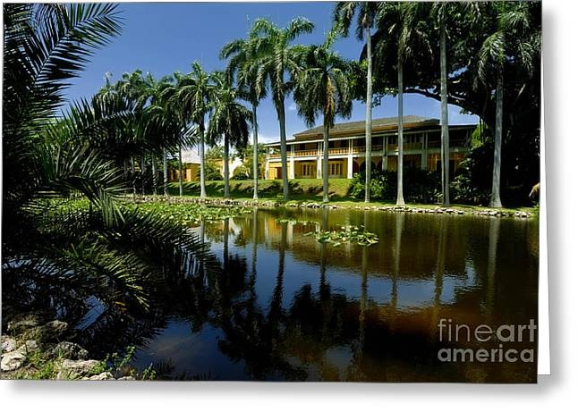 Broward Greeting Cards - Bonnet House Fort Lauderdale Florida Greeting Card by Amy Cicconi