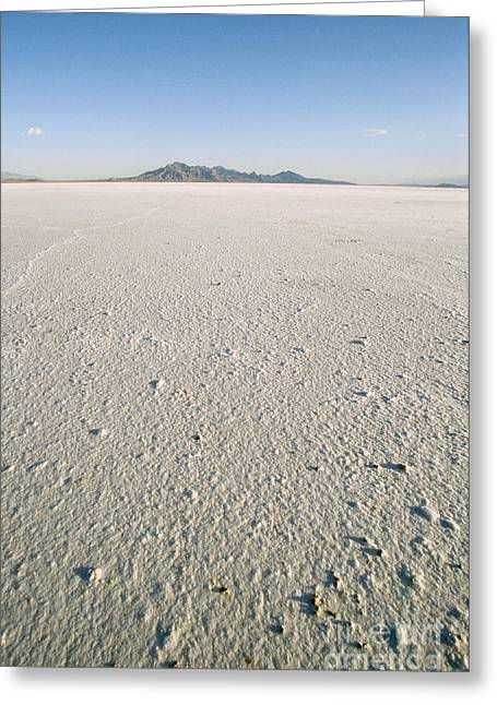 Land Speed Racing Greeting Cards - Bonneville Salt Flats Greeting Card by Mark Newman