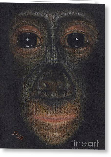 Chimpanzee Pastels Greeting Cards - Bonobo #1 Greeting Card by Rebekah Sisk