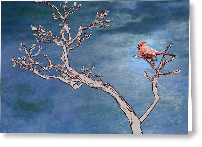 Nature Center Greeting Cards - Bonsai Cardinal Greeting Card by John Haldane