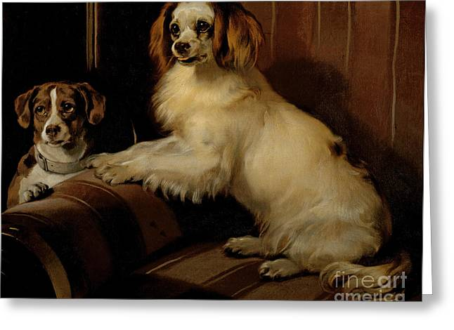 Dogs Paintings Greeting Cards - Bony and Var Greeting Card by Sir Edwin Landseer