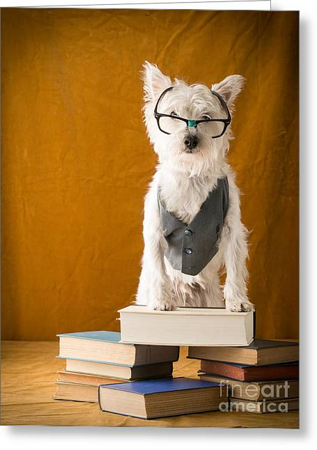Back Photographs Greeting Cards - Bookish Dog Greeting Card by Edward Fielding