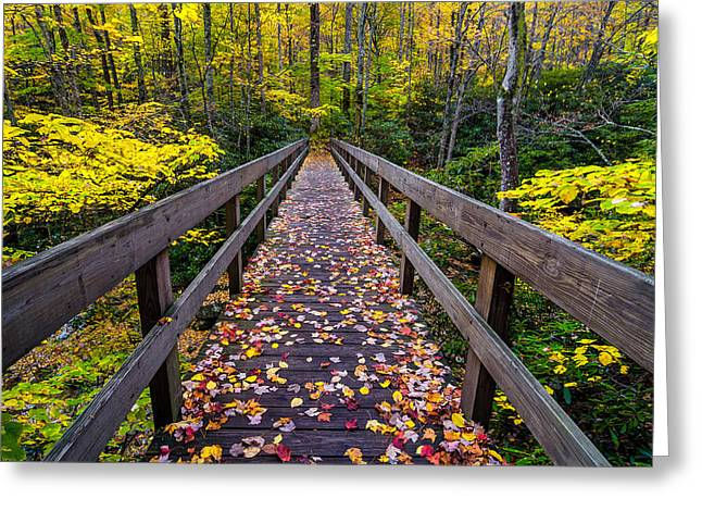 Mountain Fork Creek Greeting Cards - Boone fork bridge  Greeting Card by Anthony Heflin