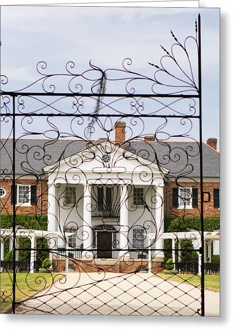 Boone Hall Greeting Cards - Boone Hall Charleston Gates Greeting Card by Stephanie McDowell