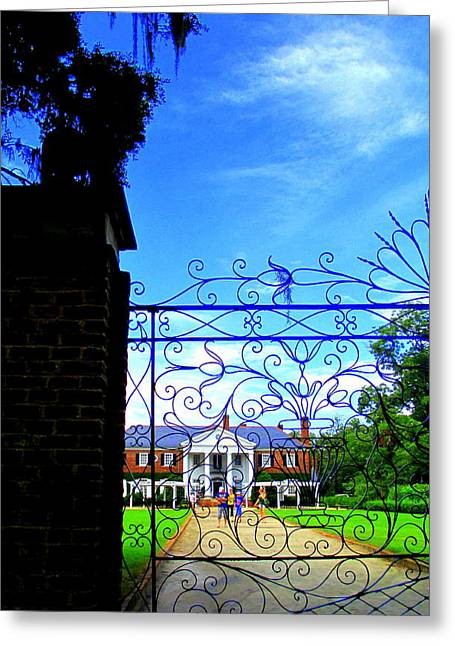 Boone Hall Greeting Cards - Boone Hall Gate Greeting Card by Randall Weidner