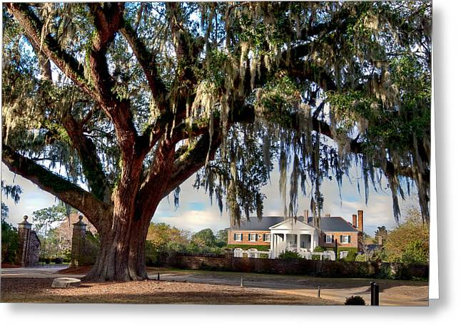 Boone Hall Greeting Cards - Boone Hall Mansion Greeting Card by Walt  Baker