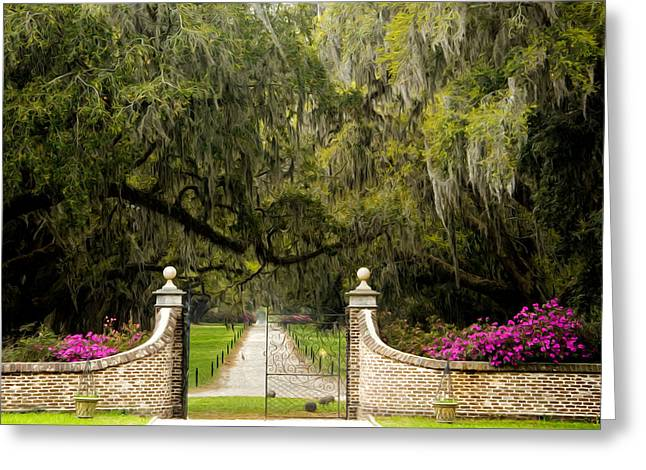 Southern Boone County Greeting Cards - Boone Hall Plantation Greeting Card by Eggers   Photography