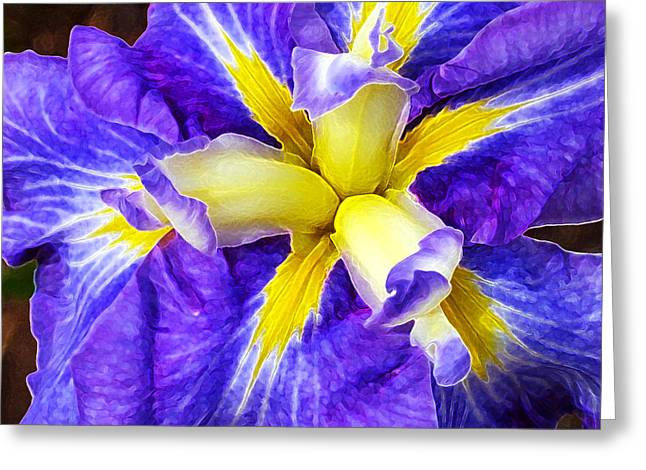 Modern Photographs Greeting Cards - Boothbay Violet Greeting Card by Bill Caldwell -        ABeautifulSky Photography