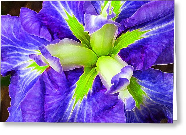 White Digital Greeting Cards - Boothbay Violet with Chartreuse Greeting Card by Bill Caldwell -        ABeautifulSky Photography