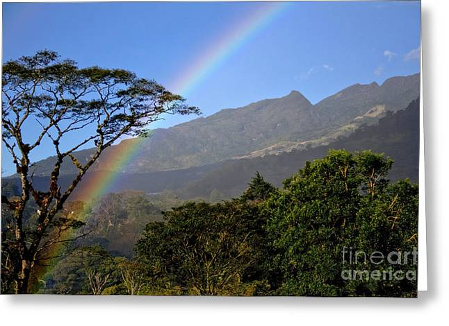 Mountain Valley Greeting Cards - Boquete Rainbow Greeting Card by Bob Hislop