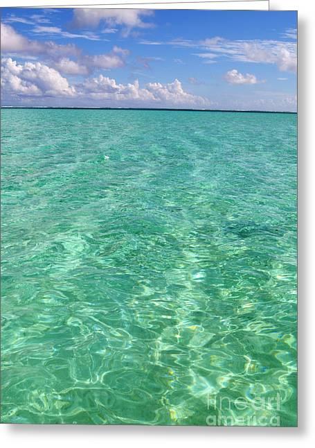 Bora Bora Green Water II Greeting Card by Eva Kaufman