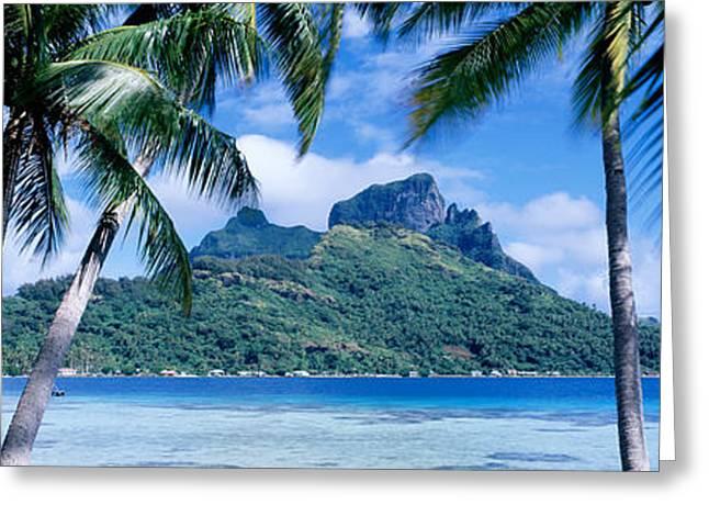 Boras Greeting Cards - Bora Bora, Tahiti, Polynesia Greeting Card by Panoramic Images